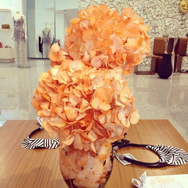 Perfect gift: Tangerine hydrangeas @ Francesca Miranda stores