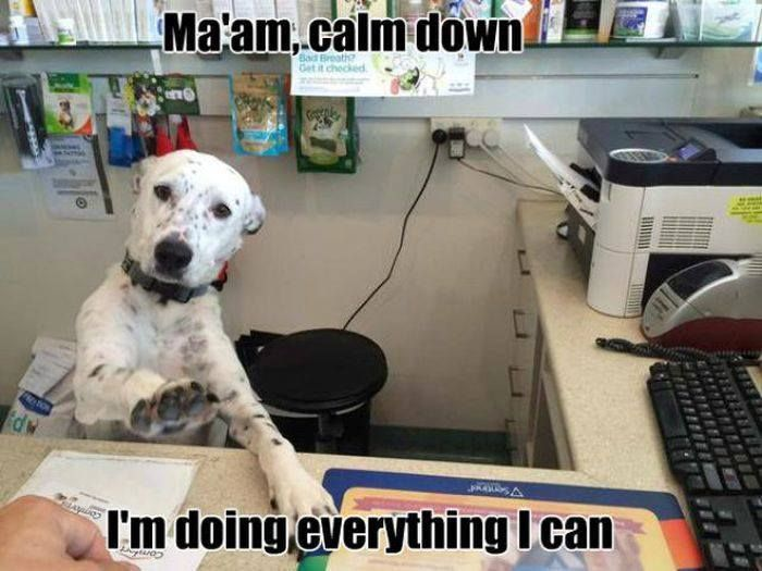 I feel calmer already!
