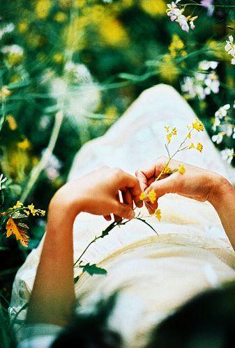 ... | Flickr - Photo Sharing!