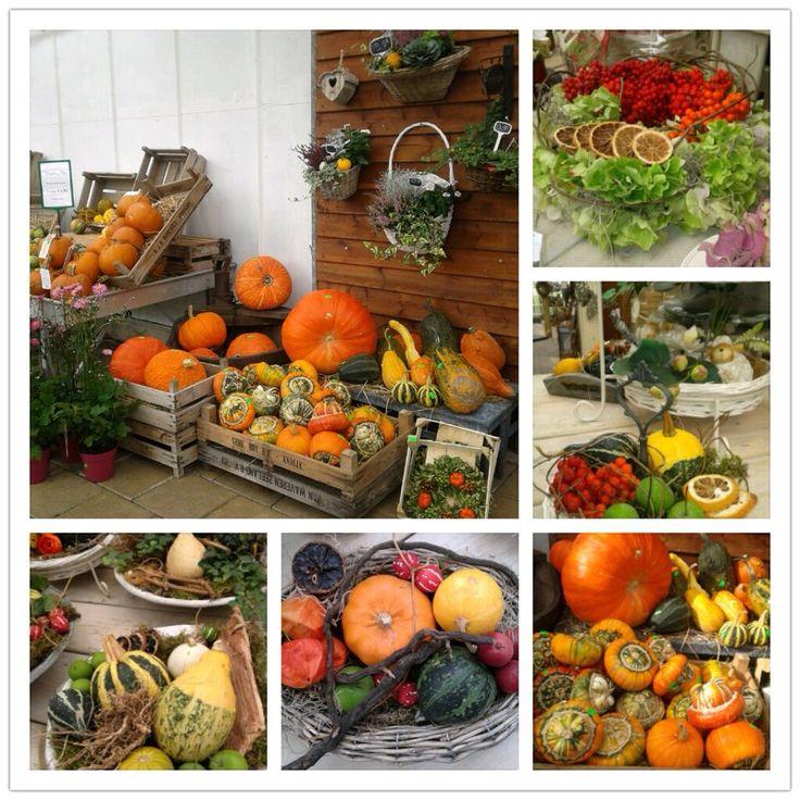 72 beste afbeeldingen over decoratie met pompoenen op for Decoratie herfst