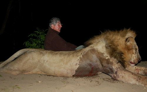 Sir David Scholey shoots lions and is supporting canned hunting operations in Zambia that is threatening the future of wild lions an endangered species.We call upon the British Prime Minister Mr Cameron to remove his knighthood. https://www.change.org/p/david-cameron-remove-sir-david-scholey-s-knighthood