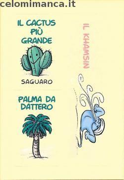 Amici Cucciolotti 2016: Fronte Figurina n. 298 Le piante del deserto