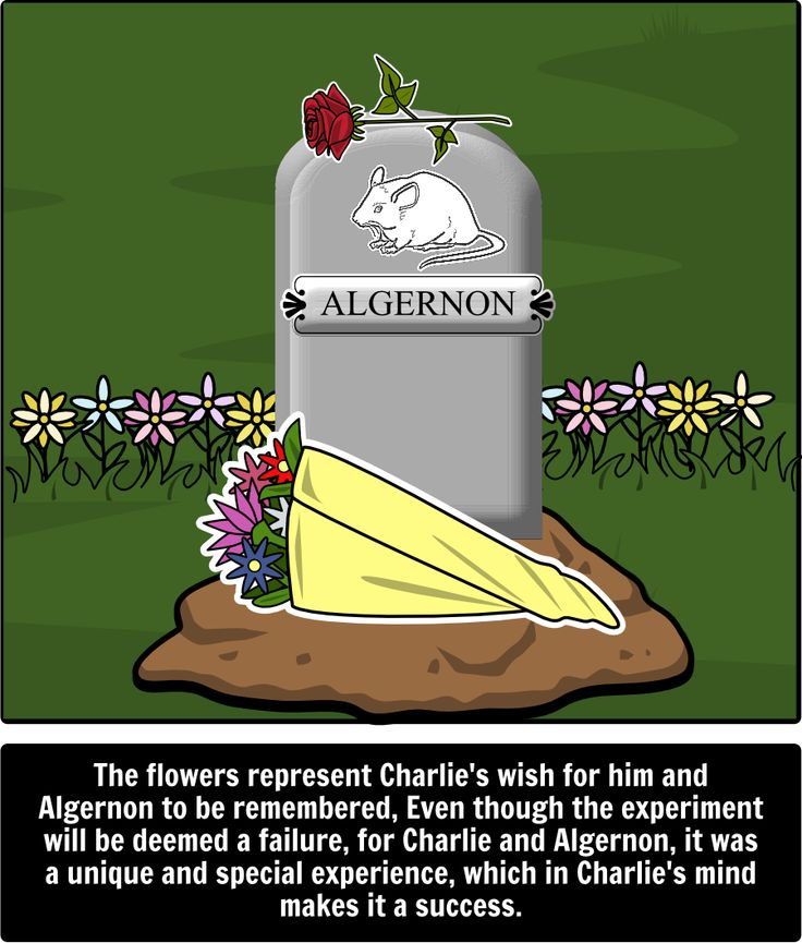 Flowers for algernon symbols and motifs