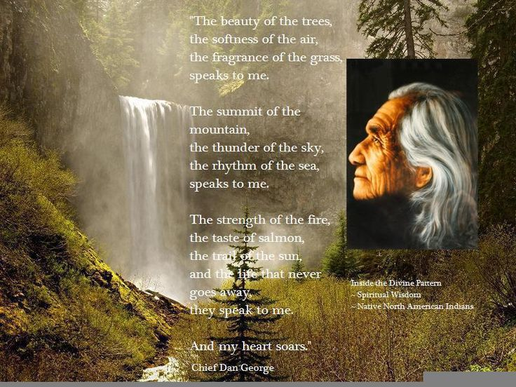 Dan Wolfe Quotes: 8 Best Images About Chief Dan George On Pinterest