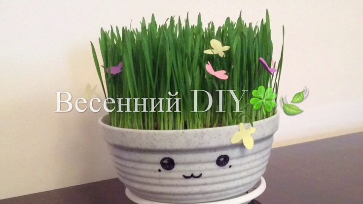 Весенний DIY.