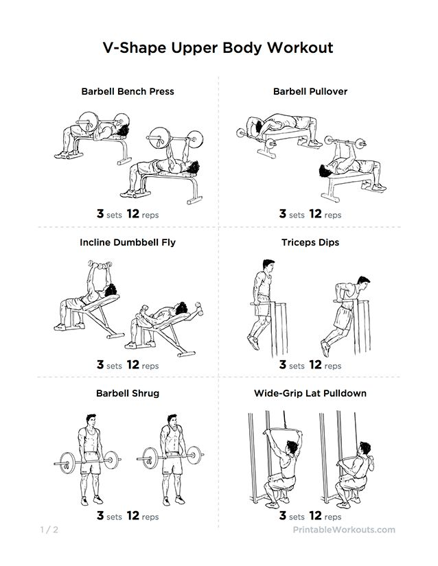 Best Upper Body Workout For Beginners Sport1stfuture Org Workouts At Home