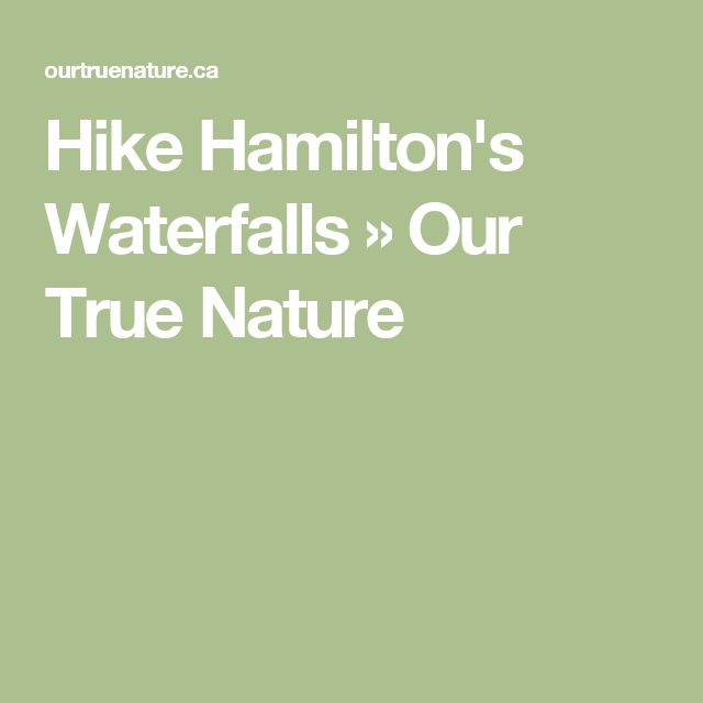 Hike Hamilton's Waterfalls » Our True Nature