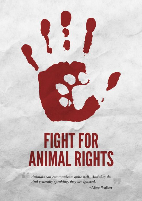 Poster: Fight for Animal Rights. With a quote from Alice Walker.