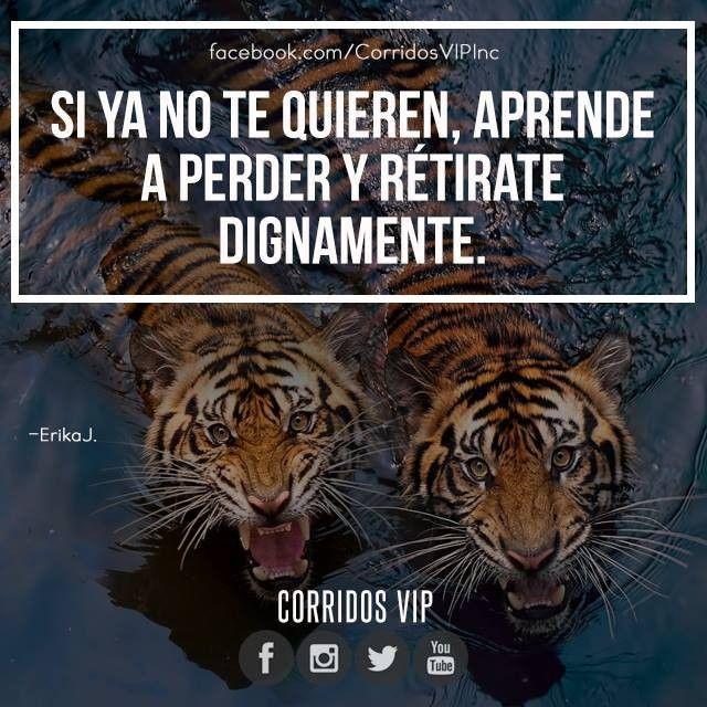 Dignidad.!! ____________________ #teamcorridosvip #corridosvip #corridosybanda…