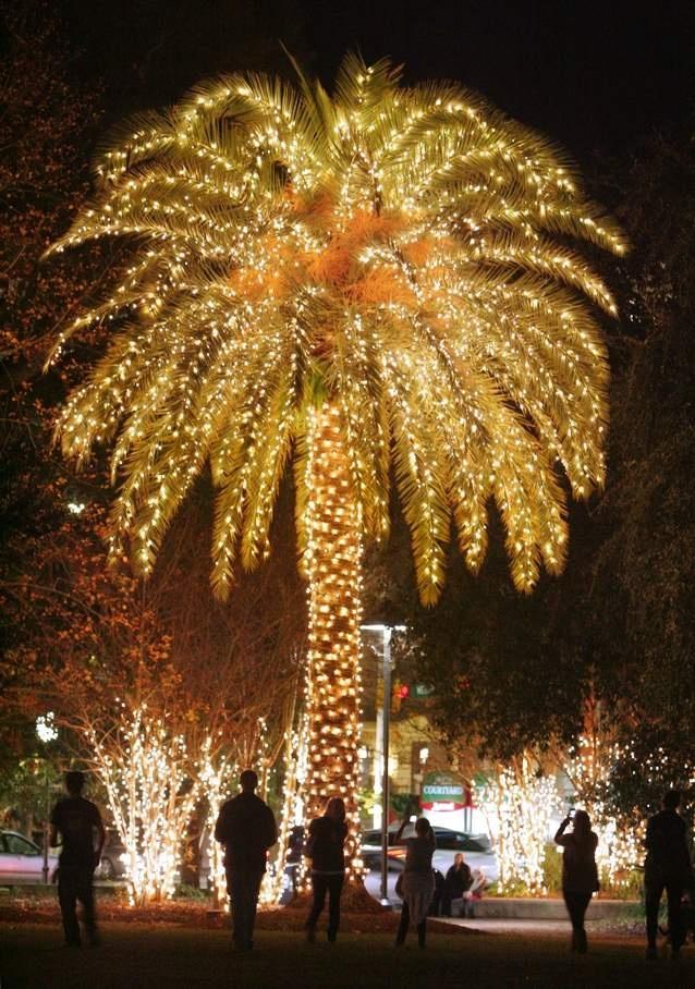 Season of light -- Lights illuminating Marion Square