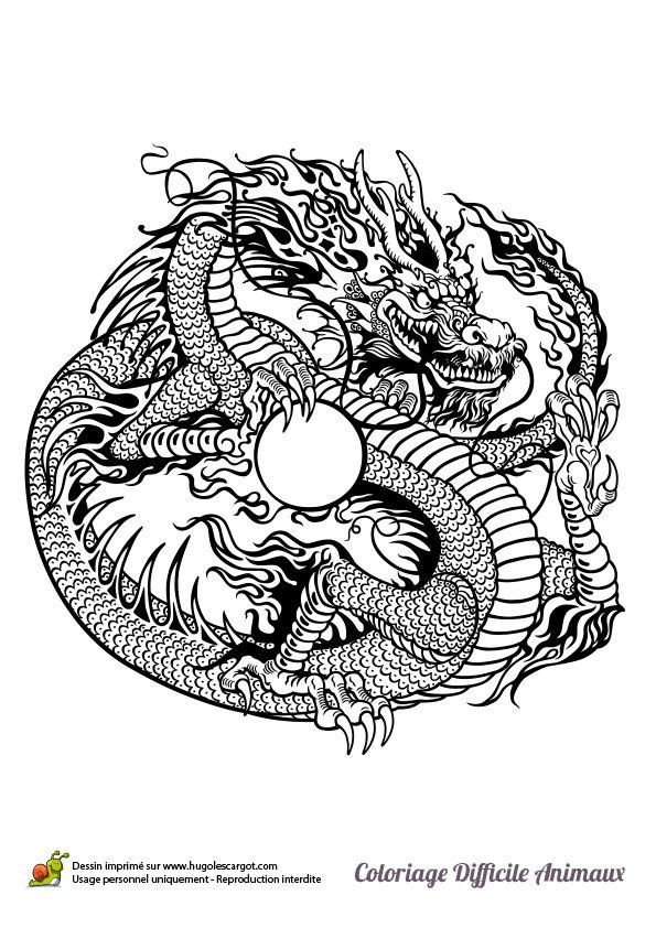 Dessin Dragon Japonais le dragon shenron de la série manga dragon ball z tenant dans ses