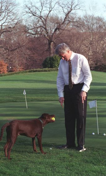 Buddy gives Bill Clinton a tennis ball while he golfs: | The 42 Best Photos Ever Taken Of White House Pets