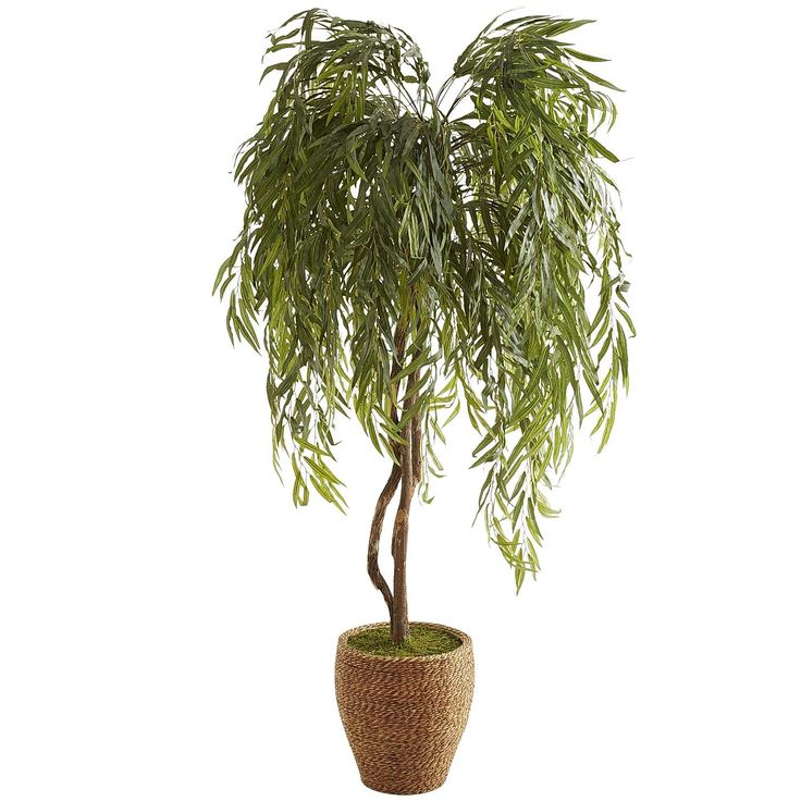 Faux weeping willow tree 6 5 39 pier 1 imports great for Faux bambou plante