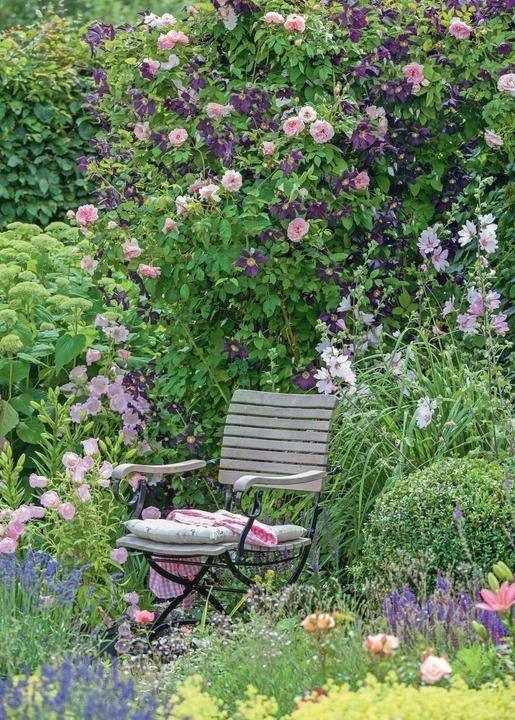 Kletterrose Kir Royal Und Clematis Viticella Romantika Gartendeko Gartengestaltung Gartenanlegen In 2020 Rose Garden Landscape Clematis Cottage Garden
