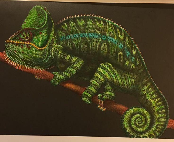 Chameleon 1 Page 6 By Silvara M