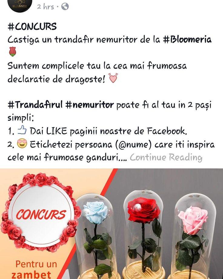 bloomeria.ro Intra pe pagina de facebook Bloomeria si participa la concurs!!! 💓 Poti fi chiar tu câștigătorul! 🌹 #bloomeria #concurs #like #share #trandafircriogenat #gift #suprise #sharelove #flowers #beautiful #florarie #shoponline #welcometotheworldofflowers #bucharest