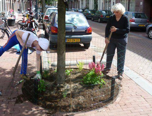 Meer dan 1000 idee n over groene straat op pinterest landschapsarchitectuur - Ruimte van het meisje verf idee ...