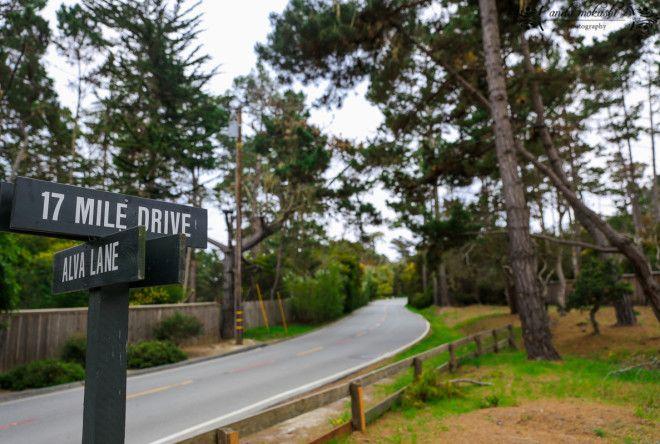 17 Mile Drive, Peeble Beach in California