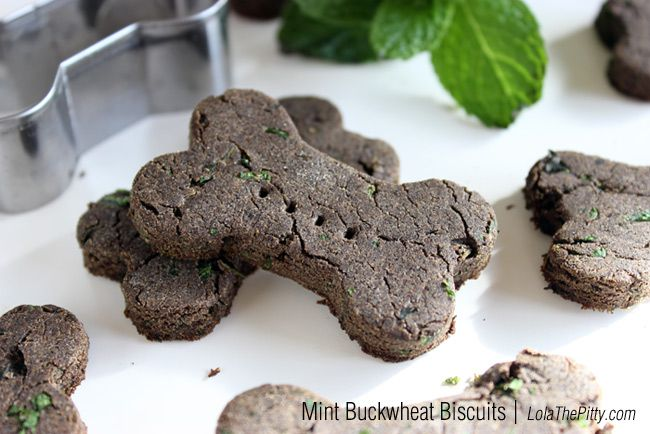 Homemade Mint Buckwheat Dog Biscuit Recipe | LolaThePitty.com Great for improving their breath, my 3 little girls can sure use that.
