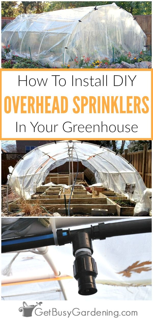 Commercial greenhouse irrigation systems are crazy expensive to buy! Learn how to design and install your own DIY overhead greenhouse watering system.