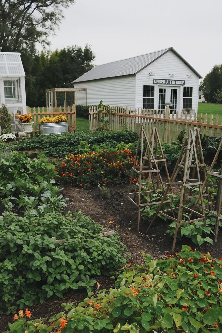Homestead Update Expanding The Garden Darker Days And Slowing Down