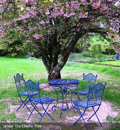 Garden Sheds Tipperary 277 best ireland tipperary images on pinterest | ireland, rock