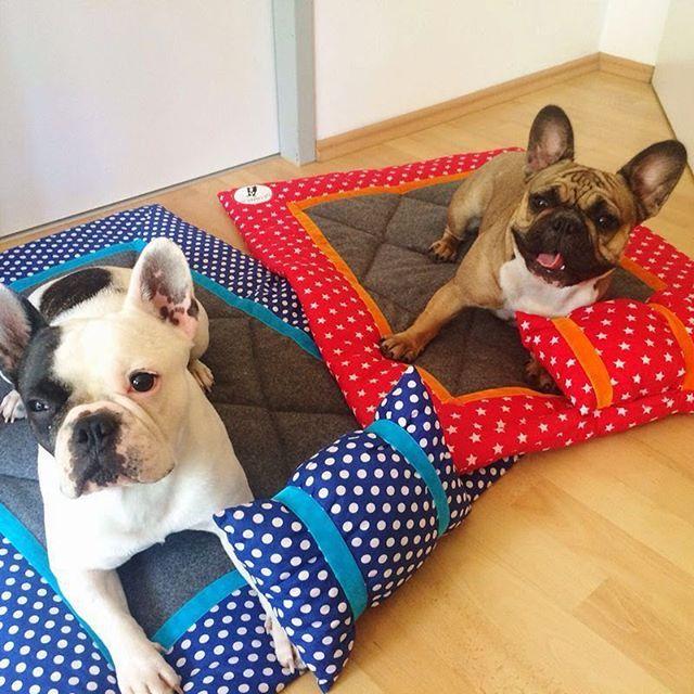 """Danke an die InstagramerIn @selina_toborek für dieses tolle Feedback: """"Grad das Bild auf meinem Handy gefunden. Abby ihre große Liebe Henry ❤ Da haben die 2 ihre neuen Hundebettis getestet. Sie mag diese Decke immernoch sehr und sie ist super für unterwegs da sie echt platzsparend ist Wünsche euch einen schönen Abend"""" #frenchbulldog #frenchie #hund #hunde #welpe #welpen #hundedecke #hundebett #liegedecke #design #style #hundeaccessoire #homedesign #mylumpi…"""
