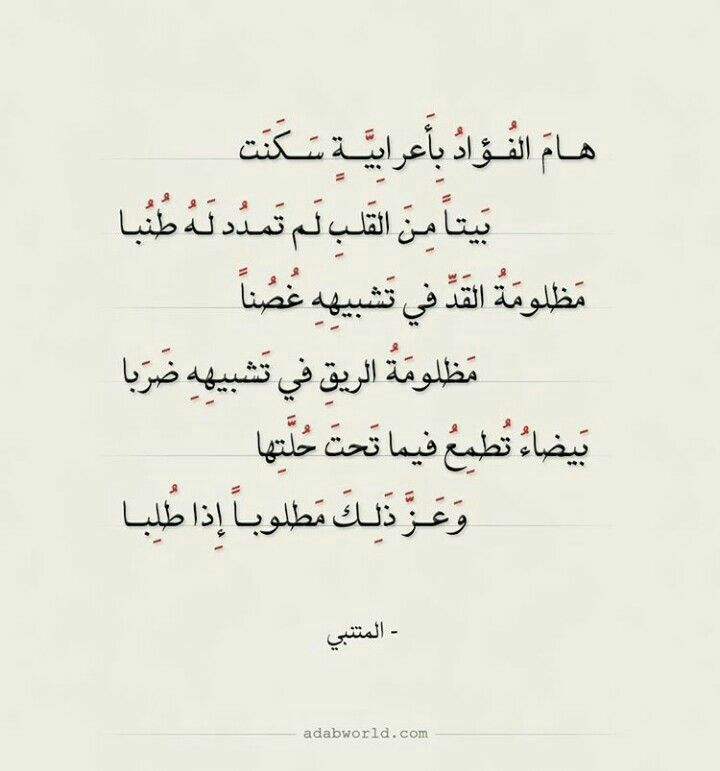 Pin By Amine Mastor On أب ي ات و أش ع ار Learn Arabic Language Poet Quotes Book Qoutes