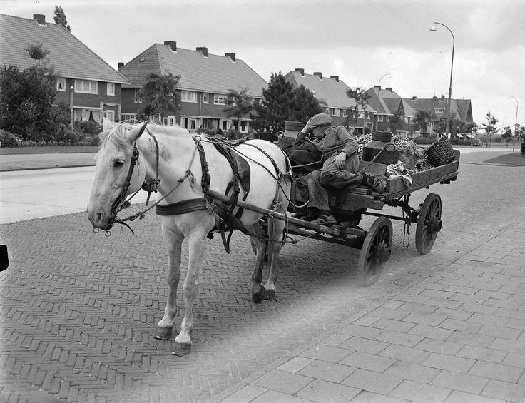 Bussum 1955 De schillenboer met paard en wagen op de Kamerlingh Onnesweg