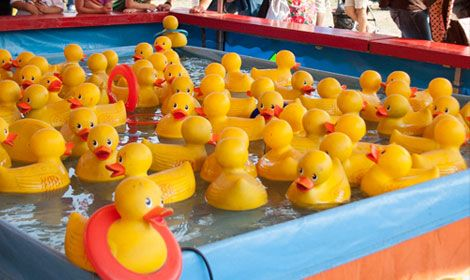 What plans do you have for this weekend? Celebrate spring by spending a fun-filled day at the Washington State Spring Fair in Puyallup! #Spring #ItsDucky