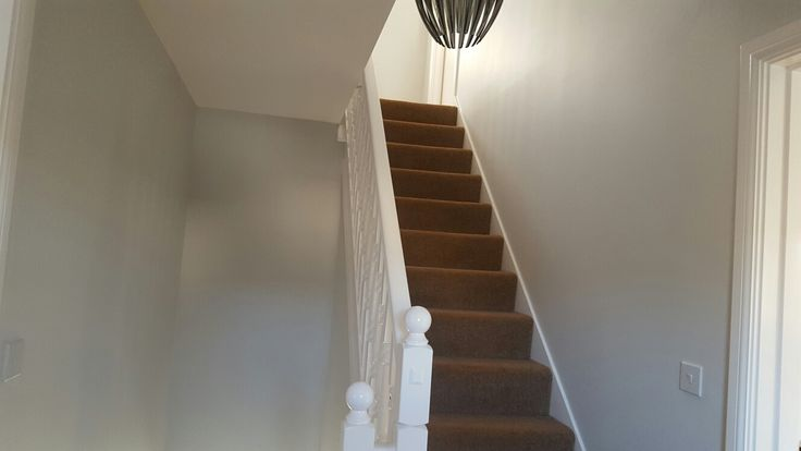 dulux polished pebble in a hallway