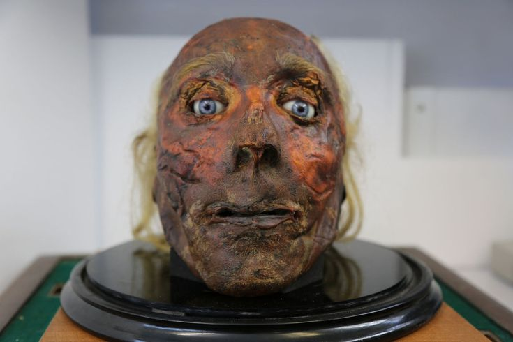 He looks better than he smells, but that's severed heads for you. Warning: a bunch of pictures of a dead head.