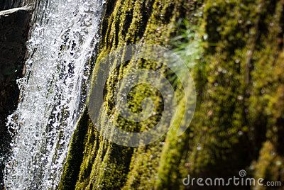 Detail of a waterfall with moss