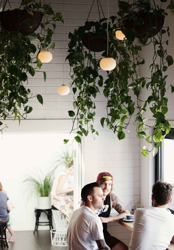 Hammer & Tong 412, Melbourne Painted brick and hanging plants for an outdoor feel