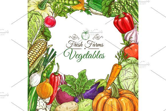 Vegetables poster, vegetarian menu design template by Vector Tradition SM on @creativemarket