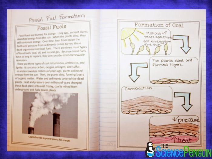 Fossil Fuel Formation Lesson Free Download What Works