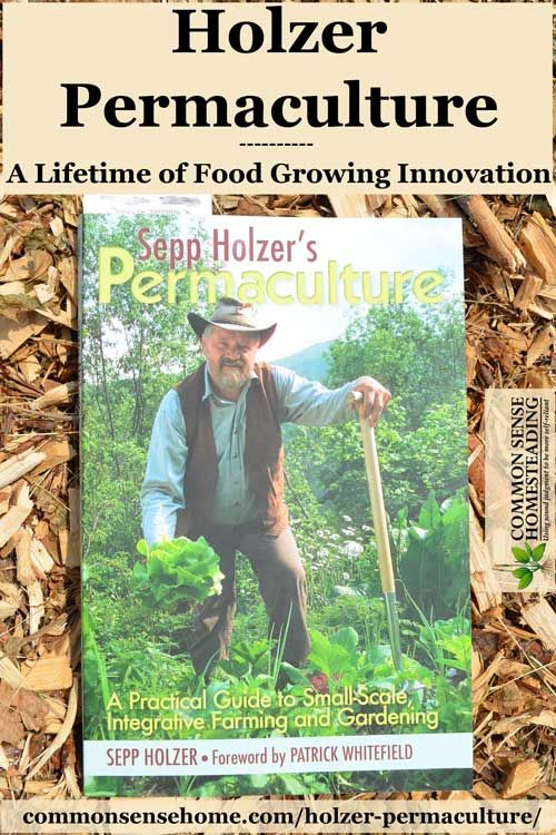 Permaculture And Food Forest Gardens Native Plant Talk: 17 Best Images About Permaculture On Pinterest
