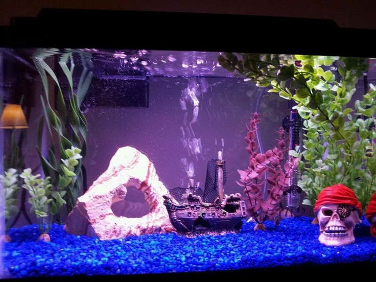 17 best images about home aquarium design on pinterest for Cool fish tank themes