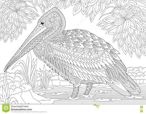 Stylized Pelican Bird Among Foliage Freehand Sketch For Adult Anti Stress Coloring Book Page With Doodle And Zentangle Elements