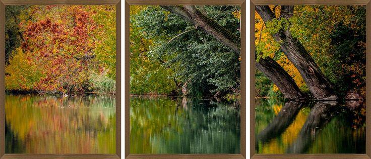 Kit de Quadros Decorativos Natureza Folhas de Outono Kit com 3 Quadros de 60x80cm - Decore Pronto
