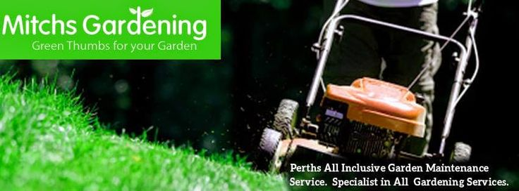Mitchs Gardening: Using Specialty Gardening Services Perth for a Med...