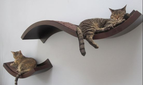 Cat Perchs for the wall  http://fab.com/sale/17562/product/35883/?fref=ad-245284363_pid=245284363=Opul