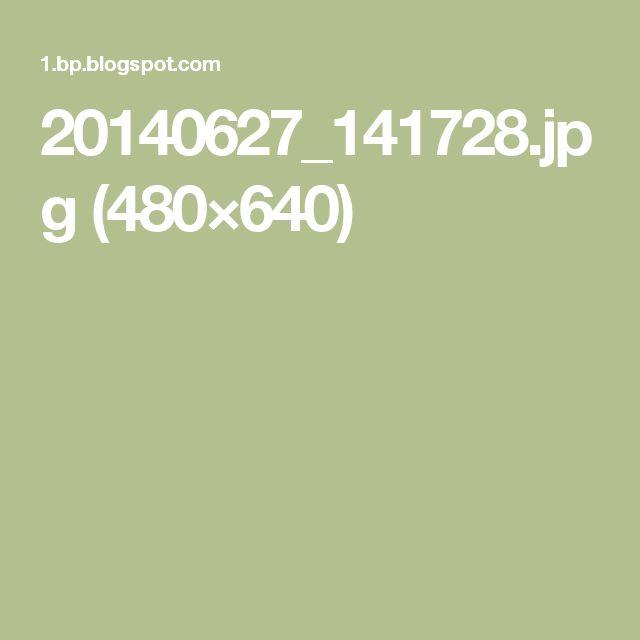 20140627_141728.jpg (480×640)