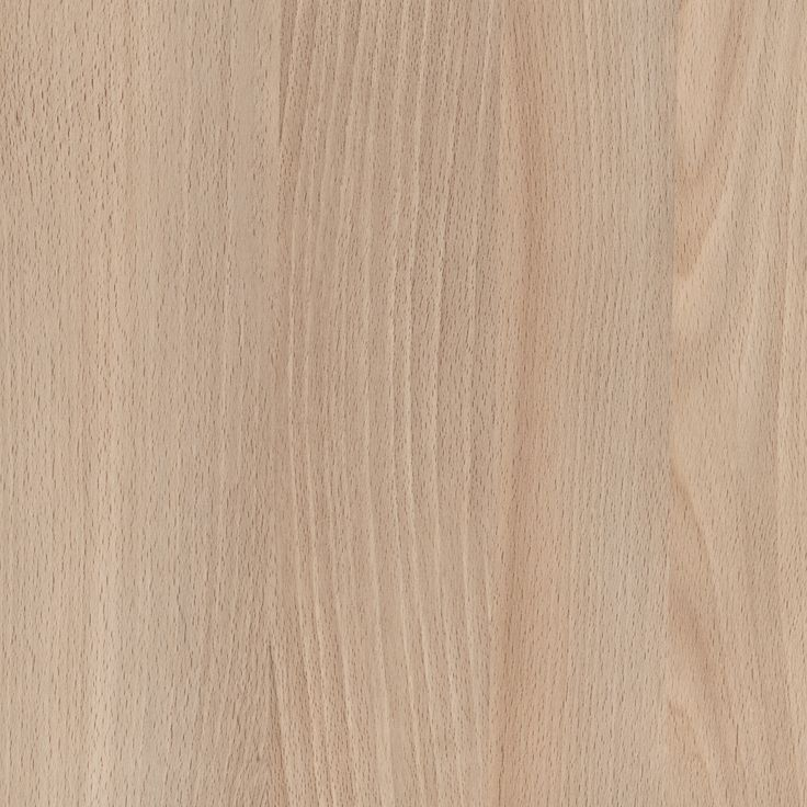 CASENTINO BEECH WOODMATT - A warm, mid-stone beech timber colour with warm and cool grey, fine timber pores and subtle planking throughout