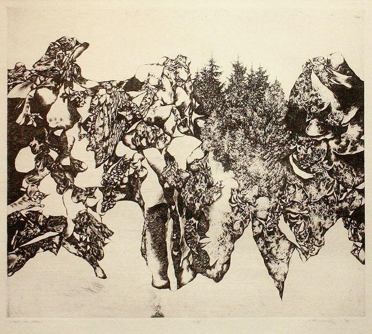 SKALY, LEN SKALY, 43x49 cm, lept / ROCKS ONLY ROCKS, etching