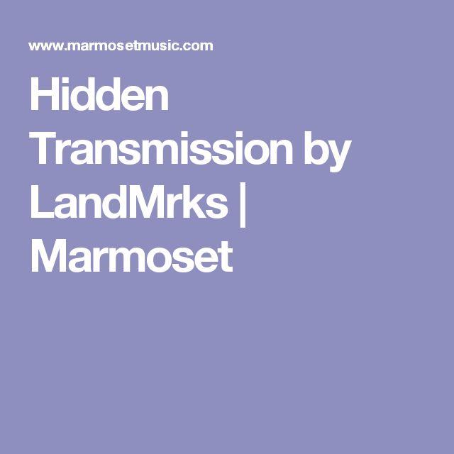 Hidden Transmission by LandMrks | Marmoset