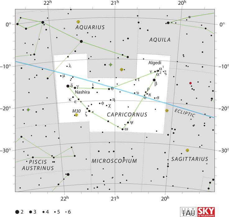 Stenbocken (stjärnbild) – Wikipedia