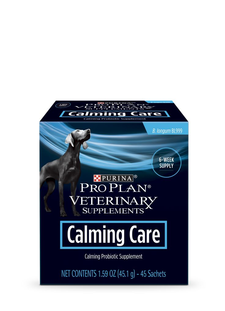 Calming Care Probiotic Supplement For Dogs Pro Plan