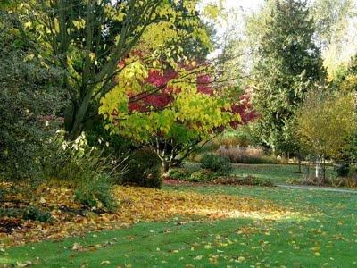 Bear Creek Park in the fall!  Surrey, BC