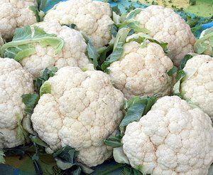 growing cauliflower, how to grow cauliflower